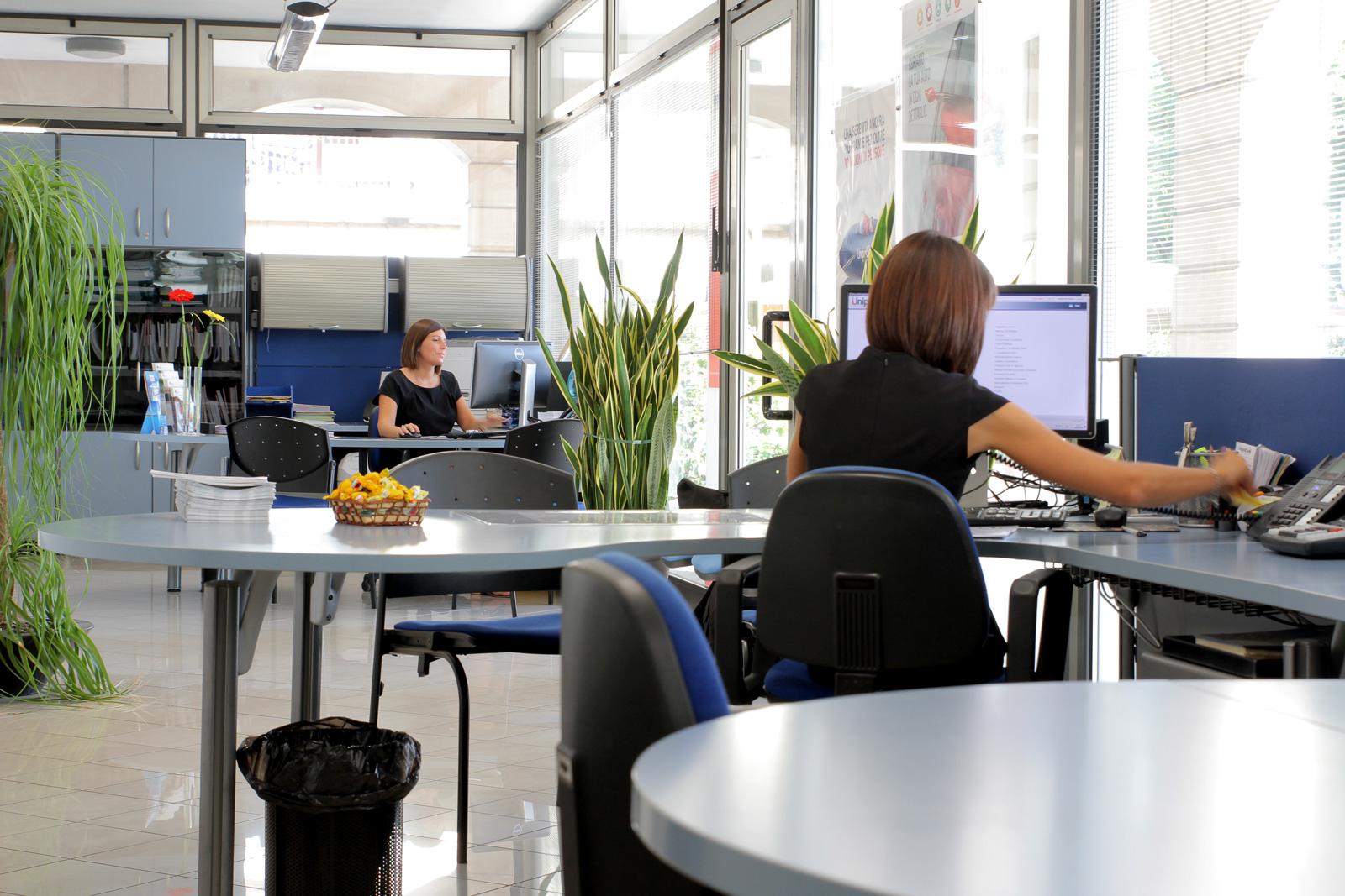 Ufficio Lavoro Jesolo : Dpiù assicurazioni sede secondaria di jesolo